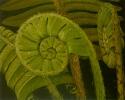 Farnspirale - 80x100cm